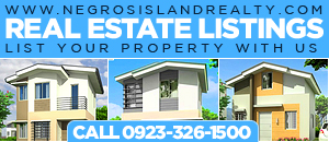 Negros Island Realty
